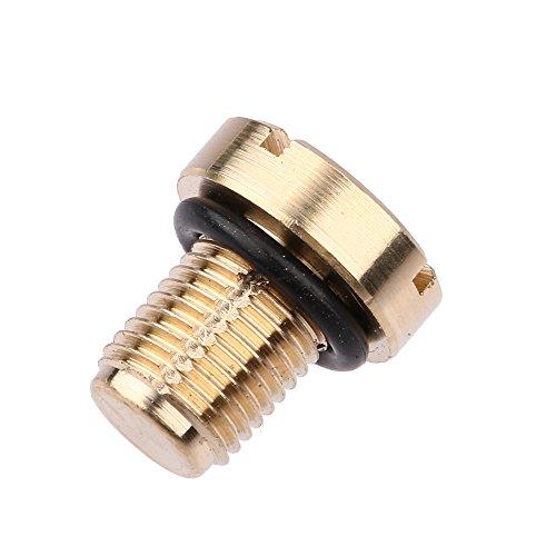 RuYunLong Tubería de radiador de Aceite de Coche/Tubería de Retorno del Tanque de Agua Tornillo de Purga del Tanque de expansión de refrigerante de latón/Apto para -B-M-W E36 E39 E46 / (Color : Gold)