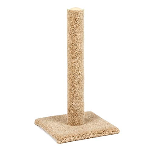 "Classy Kitty 32"" Cat Carpet Scratching Post 16.5x16.5x 32, Assorted Colors"