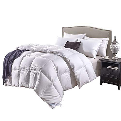 EIGHTT Doppel Größe Bettgänsefedern Daunendecken aus 100% Baumwolle Shell Anti-Staub-Feder-Proof Fabric All Season Heimtextilien Bettwaren (Size : 220 * 240cm 1400g)