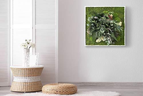 """""""Il Fosco"""", cuadro vegetal con musgo plano y plantas naturales estabilizadas, Moss Frame, sin manutención, Jungle Moss, jardín colgante estabilizado"""