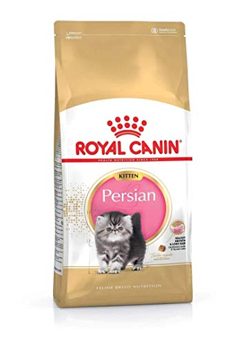 ROYAL CANIN Persian Kitten - 10 kg