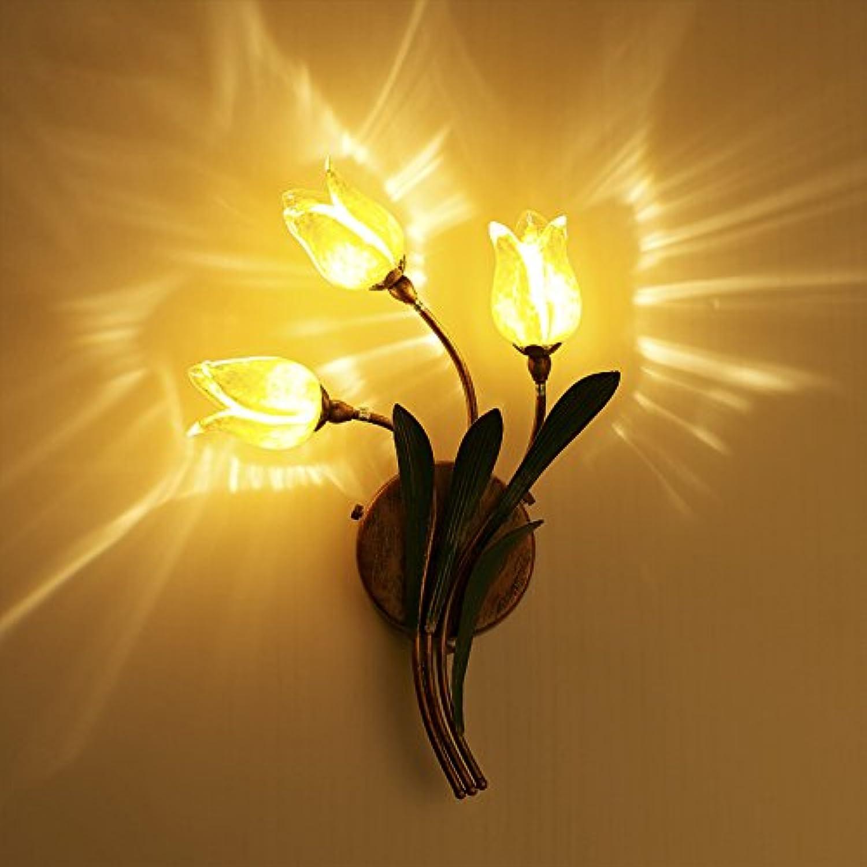 StiefelU LED Wandleuchte nach oben und unten Wandleuchten Romantisches Wohnzimmer Restaurant Blaume Garten vor dem Bett, Glas Wand Lampen, Scheinwerfer