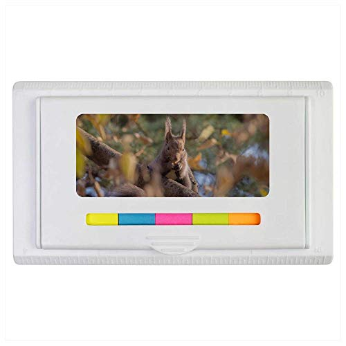 Azeeda 'Squirrel Eating Nuts' Sticky Note Ruler Pad (ST00002093)
