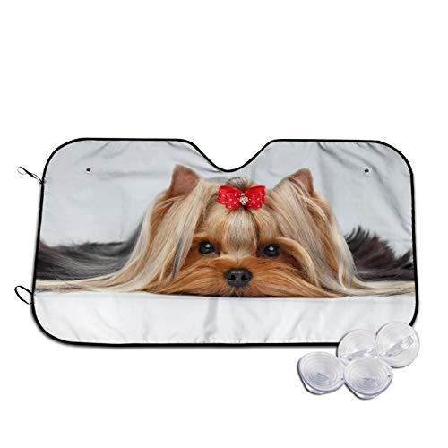 Parasol para Coche,Oseup Retrato de Yorkshire Terrier Perro acos,Parabrisas de prevención de Calor Parasol Protector de Visera de Rayos UV 51'X27.5'