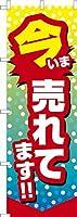 既製品のぼり旗 「今売れてます」 短納期 高品質デザイン 600mm×1,800mm のぼり