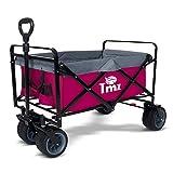 TMZ All-Terrain - Carro plegable con freno de pie, neumáticos anchos para coche, carro de jardín, 90 l, práctico manillar de rueda delantera integrada, carga de hasta 120 kg (rojo/gris)