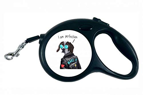 Druckerlebnis24 Rollleine - Hund Lederjacke Sonnenbrille Herz - 5M Hundeleine Nylon Ergonomischem rutschfest-Griff Einziehbar