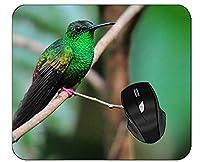 カラフルな2020年マウスパッドハチドリ鳥緑の羽のマウスマット
