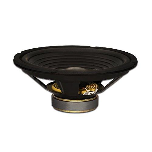 Goldwood Sound GW-210/8 OEM 10' Woofer 220 Watts 8ohm Replacement Speaker