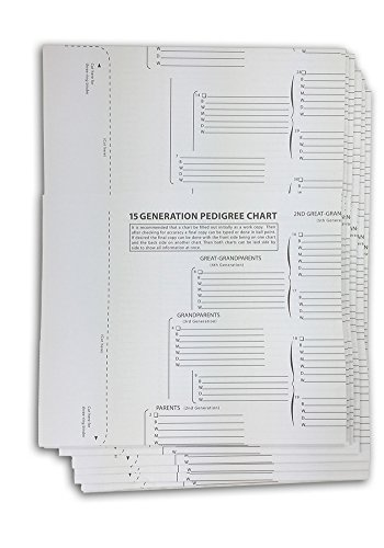 TreeSeek 15 Generation Pedigree Chart   5 Pack   Blank Genealogy Forms for Family History and Ancestry Work