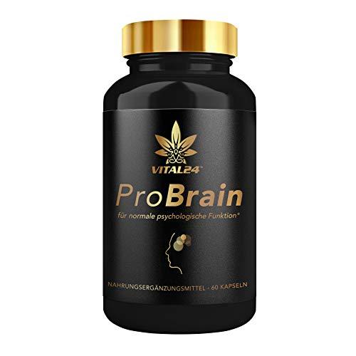 VITAL24 - ProBrain Energy Booster & Anti Stress Kapseln mit Koffein, L-Theanin, Magnesium und Zink - hochdosiert