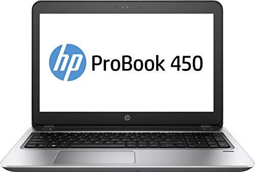 HP ProBook 450 G6 Plata Portátil 39,6 cm (15.6