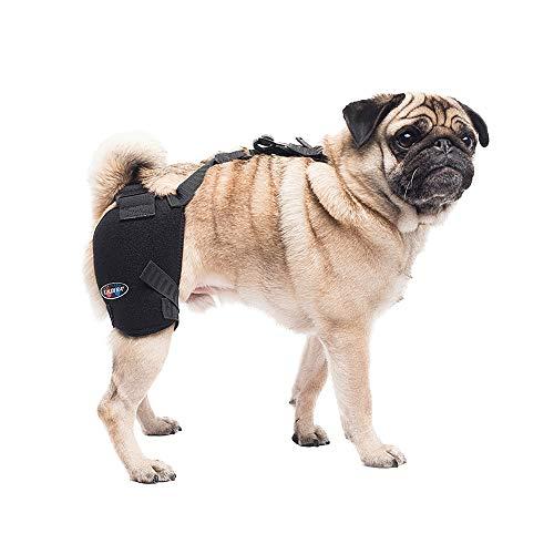 Caldera International Pet Therapy Hip Wrap with Gel, Small, Black