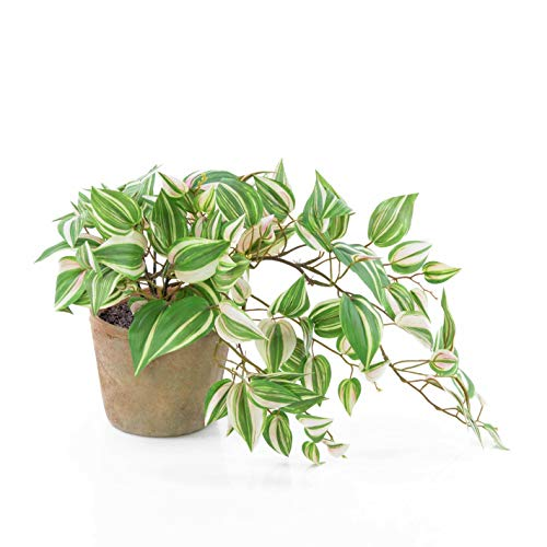 artplants.de Künstliche Tradescantia PACO im Terracotta Topf, grün-weiß, 50cm - Kunst Zimmerpflanze - Deko Hängepflanze