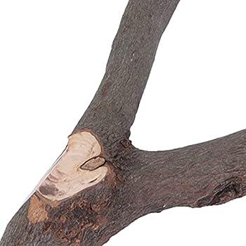 Voluxe Perchoir à mordre en bois naturel non toxique pour cage à oiseaux