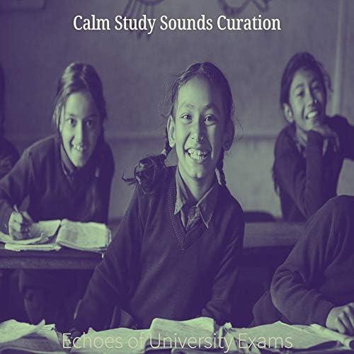 Calm Study Sounds Curation