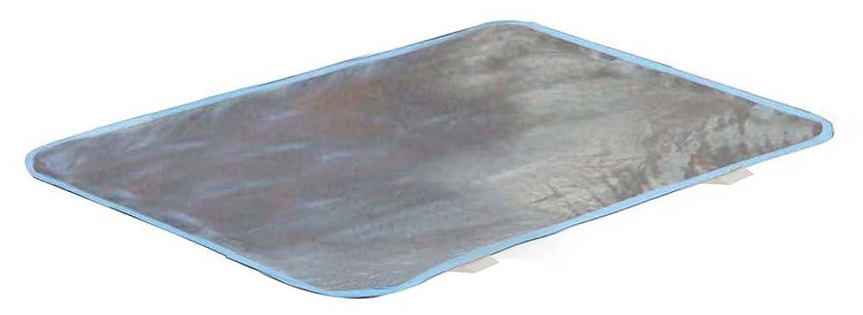 必要条件レジデンスブレスエコでクール(TM) メタリック 【低反発ジェルパッド】 枕用(30×45)