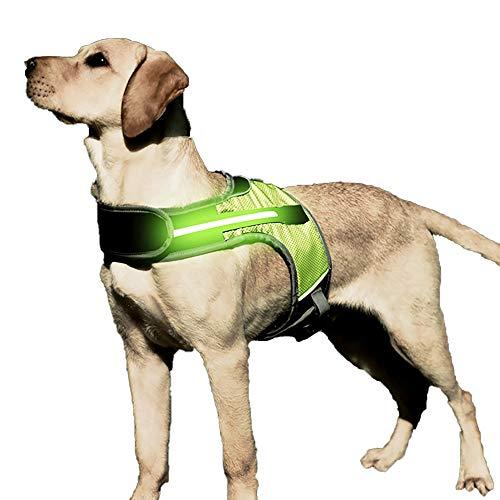 Yajun Arnés Luminoso LED para Perros Correa para el Pecho para Mascotas Collar Reflectante de Seguridad Malla Suave Transpirable Chaleco para Entrenamiento Caminar al Aire Libre,XL(Bust-67-85cm)