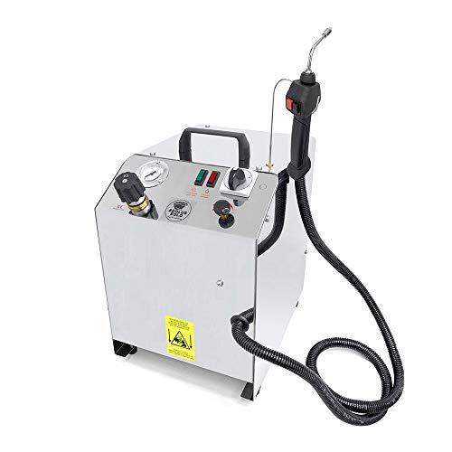 EOLO Generatore di Vapore Professionale Pulitore Disinfettante Potente Caldaia in Rame Beccuccio di Precisione LP02 S M