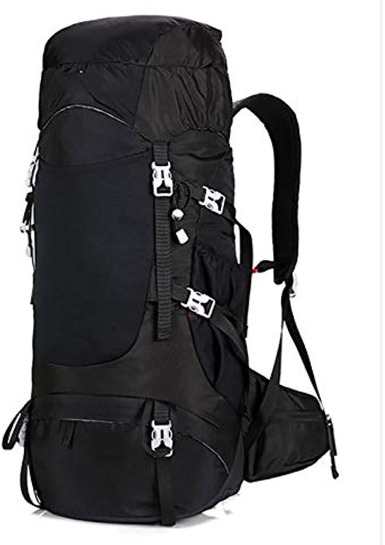 WY-AYNG 65L Bergsteigertasche Outdoor-Reiserucksack Sportrucksack Wasserdichtes Nylongewebe Verschleißfest,schwarz B07H8FK16P  Verwendet in der Haltbarkeit