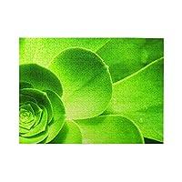 ジグソーパズル 木製パズル 緑の植物 絵画 脳チャレンジ DIYの家の装飾 プレゼント 楽しい遊び ピクチュアパズル 部屋飾り 知育玩具 マイクロピース 500ピース Puzzle (38x52cm)