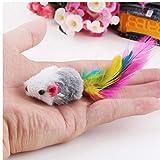 TOSSPER 1 Pc Katzenspielzeug Falsch Maus Interactive Mini Funny Animal Spielen...