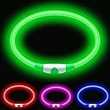 Premium Paws Collar de perro con luz LED recargable por USB, ultra brillante, múltiples modos incluyendo intermitente y constante, collares de perro iluminados (verde)