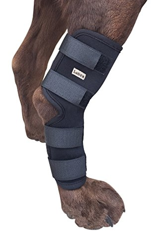 Labra Supportive Dog Canine Rear Leg Hock Joint Wrap Protects Wounds as They Heal Compression Brace...