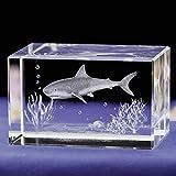 Figura de cristal - Tiburón Blanco - Escultura de cristal láser 3D | Decoración | 30 x 45 x 30 mm | Idea de regalo decorativa