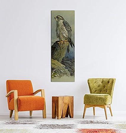 Leinwandbild Archibald Thorburn Falken Wandbild Alte Meister Kunstdruck Bild auf Leinwand Ber/ühmte Gem/älde 30x40cm hochkant
