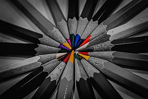 HQHff Lápices de Colores Negro Blanco,Puzzles Adultos 1000 Piezas 75x50cm,3D Puzzles de Madera Adultos Regalo de Juguete Educativo para niños