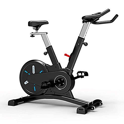 AYHa Entrenamiento de bicicleta de ejercicios de fitness Inicio, Gimnasio equipo perfecto para fitness culturismo,Negro