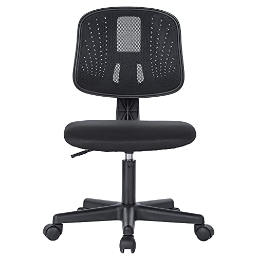 Lefuneo Low-Back Armless Office Chair Mesh Ergonomic Swivel Computer Desk Chair for Small Spaces, Black