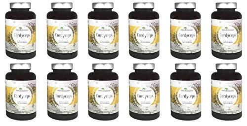 Organic Cordyceps by Aloha Medicinals - Certified Organic Medicinal Mushrooms, Supports Energy and Stamina - 525mg - 12 Bottles of 90 Vegetarian Capsules