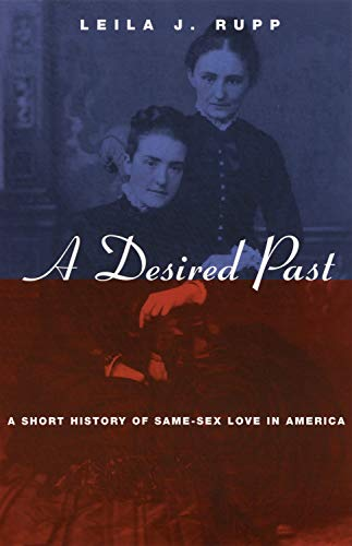 A Desired Past: A Short History of Same-Sex Love in America (English Edition)