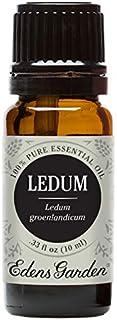 Edens Garden Ledum Essential Oil, 100% Pure Therapeutic Grade (Cold Flu & Detox) 10 ml