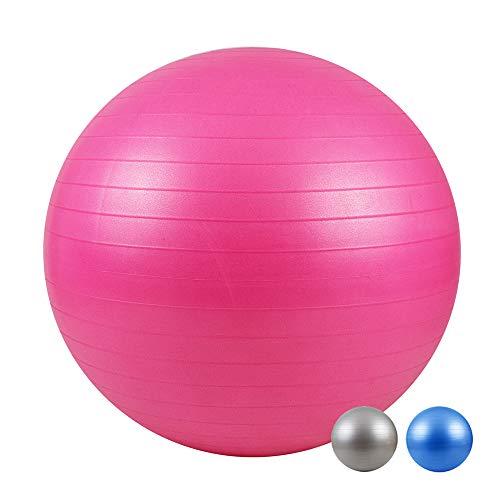 LOMOS Palla Fitness Professionale, con Pompa Inclusa, in Diverse Forme e Dimensioni