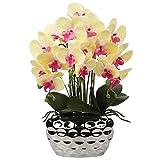 Orchidea artificiale da 43,2 cm con fiori falaenopsi, orchidea in seta con vaso in ceramica argentata, centrotavola per tavolo e soggiorno, decorazione per la casa