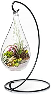 Best pear shaped glass Reviews