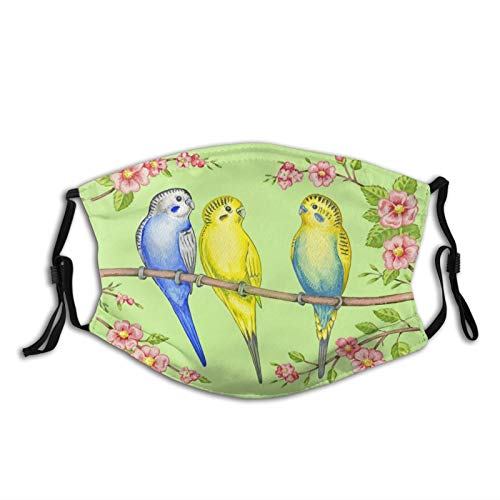 Budgie Parakeets Parrots Face Masks for Adults, Washable Face Balaclava Reusable with 2 Filter for Men Women - pink - One size