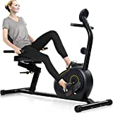 Merax Magnetic Recumbent Exercise Bike | 8-Level Resistance | Quick Adjust Seat (Black 2019)
