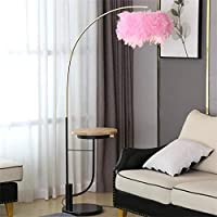 棚のフロアランプ創造的人格のリビングルーム羽のランプ寝室のベッドサイドランプ (Color : Pink)