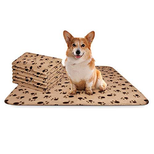 Nobleza - 6 x Hundedecke Weiche Fleecedecke Waschbare Deck für Haustier Hunde Katzen Welpen Weiche Warme Matte, Beige, 75 * 75cm