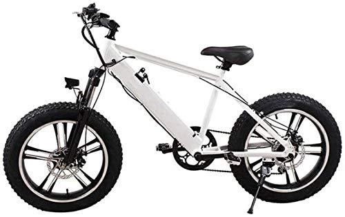 Bicicletas Eléctricas, Adultos bicicleta de montaña eléctrica, con 250W Motor 20 pulgadas 4.0 Ancho de neumáticos de motos de nieve Frenos batería extraíble de doble disco Urban Commuter E-Bici unisex