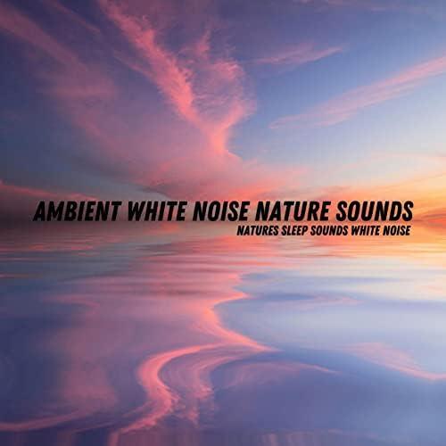 Ambient White Noise Nature Sounds
