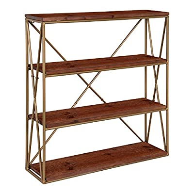 Kate and Laurel Ascencio 4-Layer Modern Glam Wooden Wall Shelves with Gold Metal Frame and Walnut Brown Display Boards, 22x6x24.25