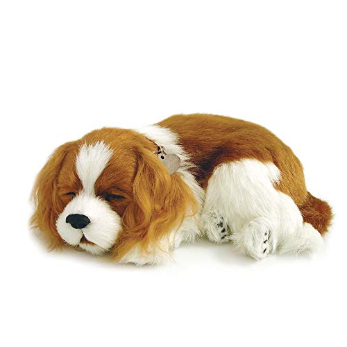 powerful Original Petzzz Cavalier King Charles Realistic and Realistic Soft Interactive Pet Toy Companion Dog 100% Handmade Faux Fur – Perfect Petzzz