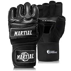 MMA Handschuhe Profi von