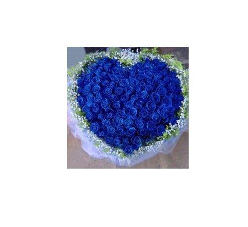 50 Pcs Blue Rose BLUELOVER Flower Seeds DIY jardin dŽcembre