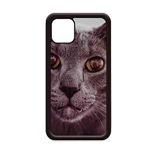 Animal Big Eye gris gato fotografía para iPhone 12 Pro Max cubierta para Apple mini Mobile Case Shell